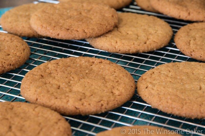 Honey Snap Cookies-6