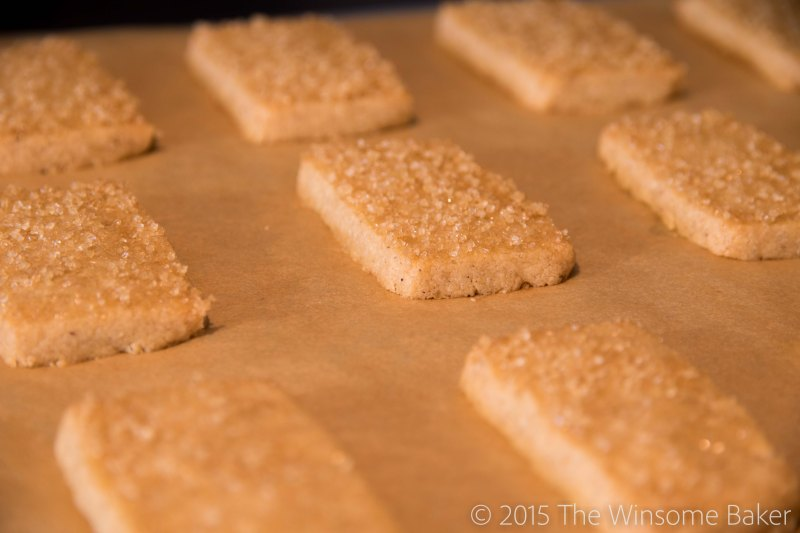 Spiced Finnish Sugar Cookies-9