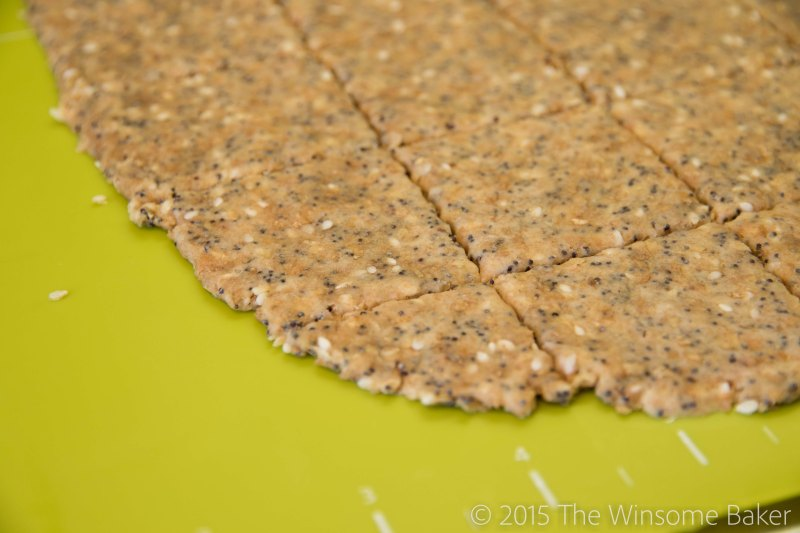 Seeded Multi-grain Crackers-10