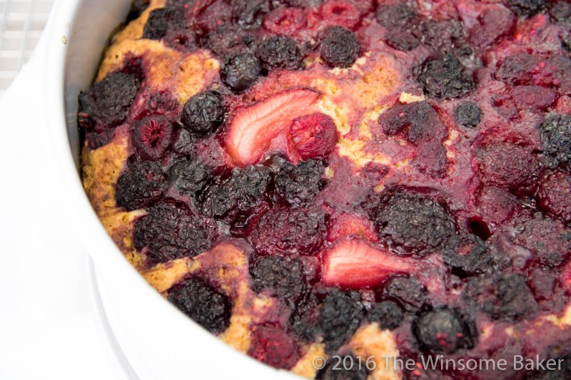Mixed Berry, Yoghurt + Olive Oil Cake -9