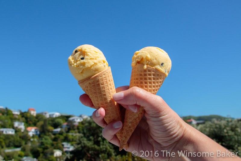 mango-passionfruit-frozen-yoghurt-7