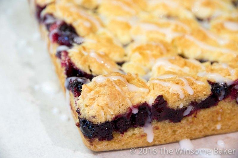 blueberry-shortcake-crumble-bars-14